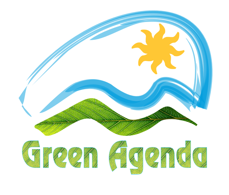 Axhenda e Gjelbër dhe prespektiva shqiptare