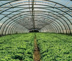 Turizëm i qendrueshëm dhe promovimi  i produkteve agro-ushqimore në zonën e Anës së Malit